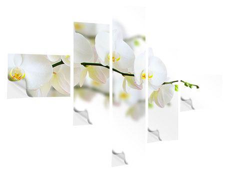 Klebeposter 5-teilig modern Weisse Orchideen