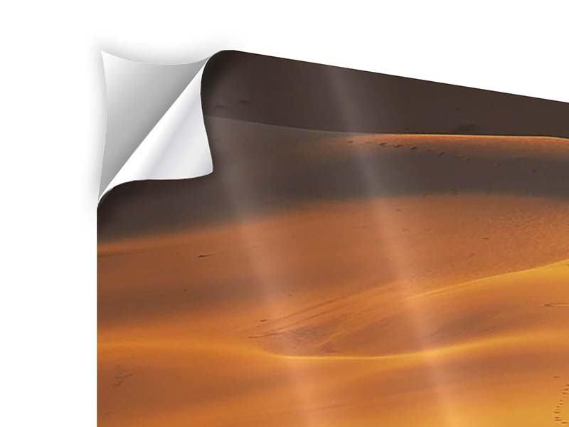 Klebeposter 5-teilig modern Wüstensand