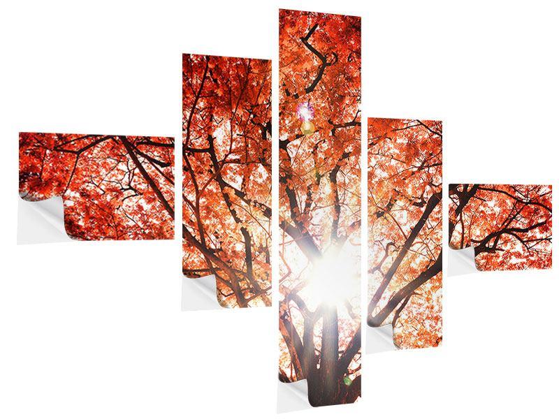 Klebeposter 5-teilig modern Herbstlicht