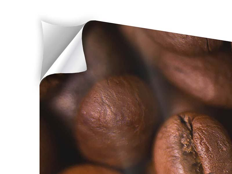 Klebeposter 5-teilig modern Close Up Kaffeebohnen
