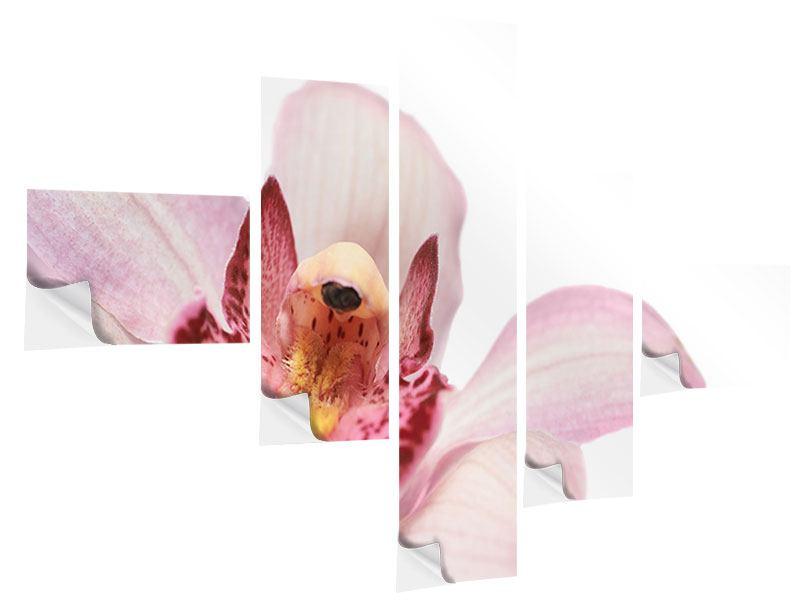 Klebeposter 5-teilig modern Orchideenblüte XXL