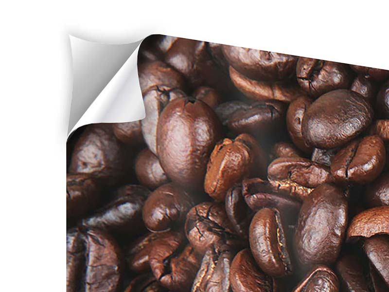 Klebeposter 5-teilig modern Kaffeebohnen in XXL