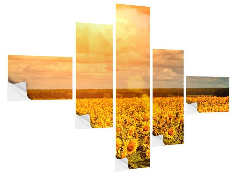 Klebeposter 5-teilig modern Goldenes Licht für Sonnenblumen