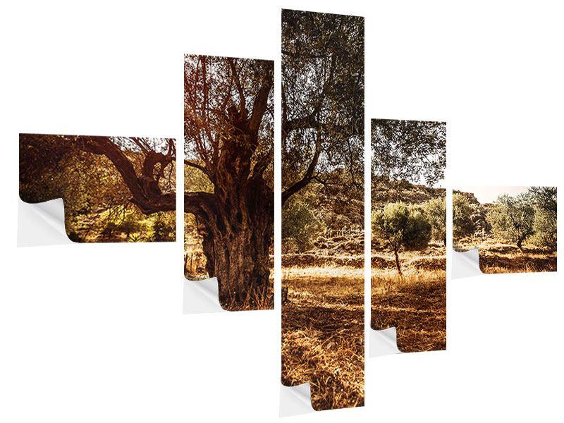 Klebeposter 5-teilig modern Olivenhain