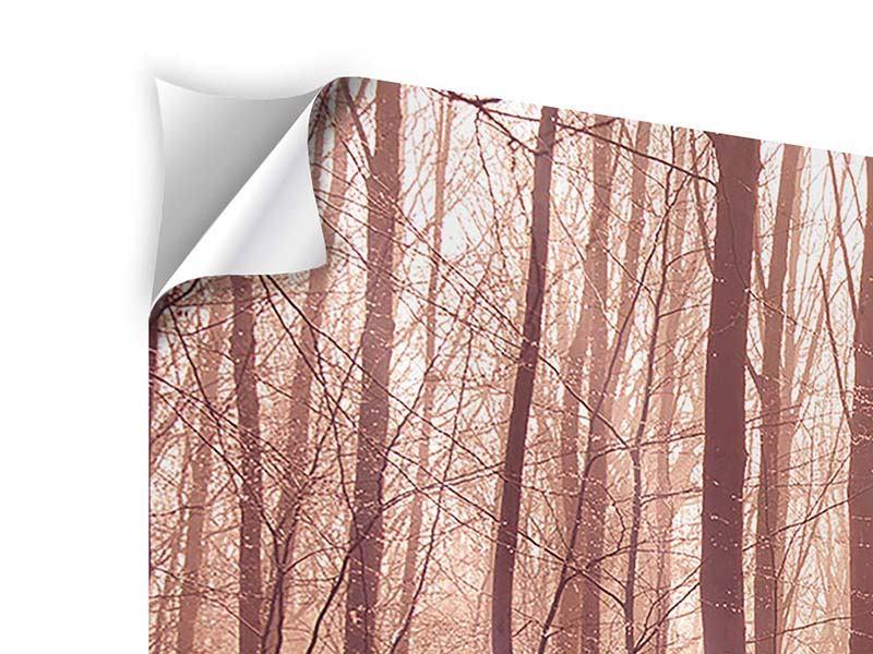 Klebeposter 5-teilig modern Sonnenuntergang im Herbstwald