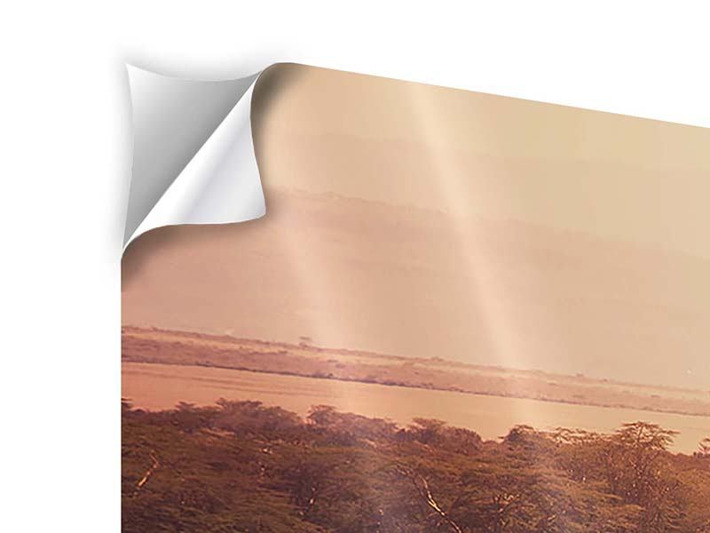 Klebeposter 5-teilig modern Malerisches Afrika