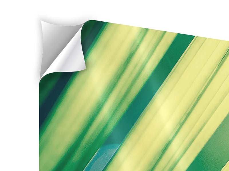 Klebeposter 5-teilig modern Beleuchtetes Palmblatt