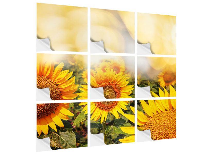 Klebeposter 9-teilig Das Licht der Sonnenblumen