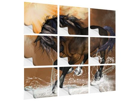 Klebeposter 9-teilig Black Beauty