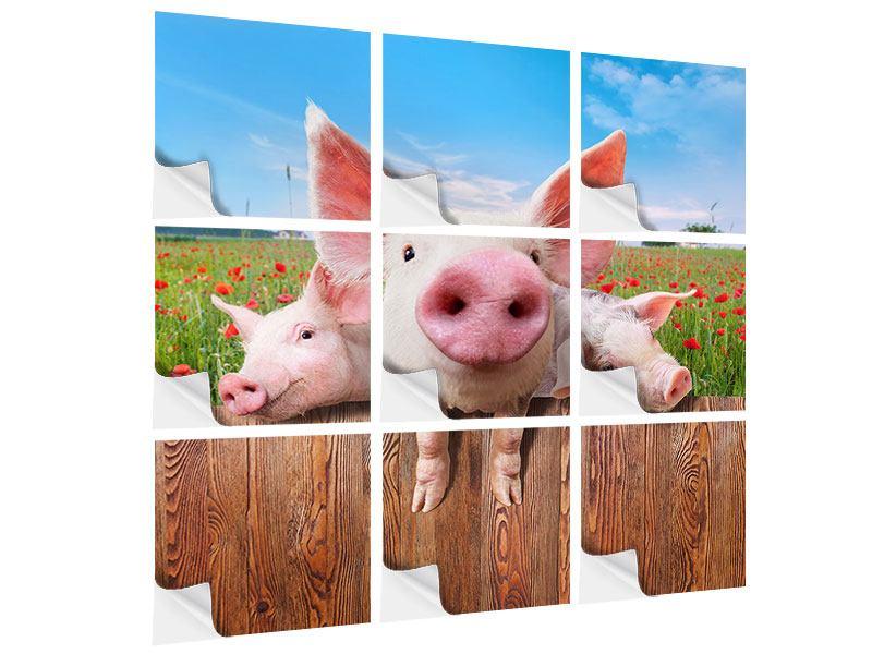 Klebeposter 9-teilig Schweinchen im Glück