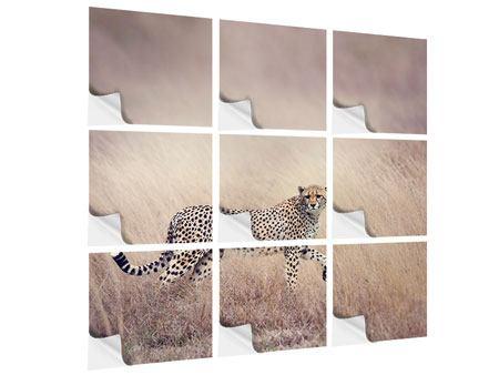 Klebeposter 9-teilig Gepard