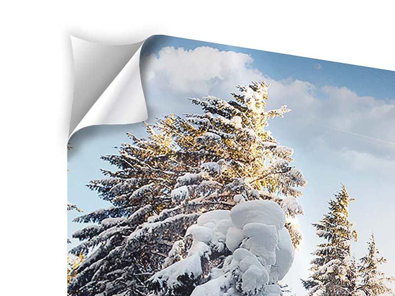 Klebeposter 9-teilig Tannen im Schnee