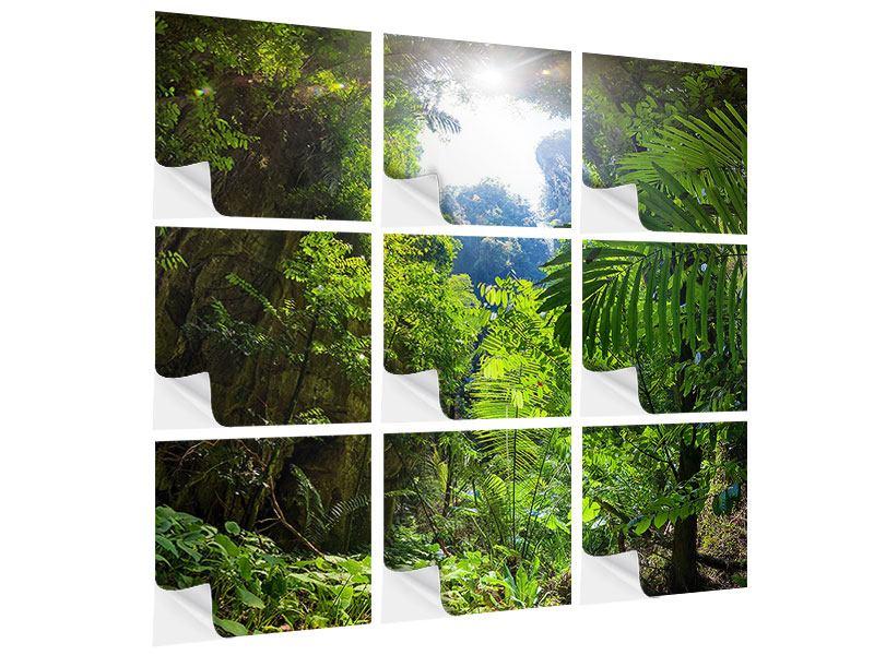 Klebeposter 9-teilig Lichtung im Dschungel