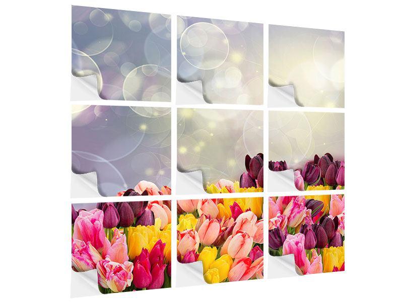 Klebeposter 9-teilig Buntes Tulpenbeet im Lichtspiel
