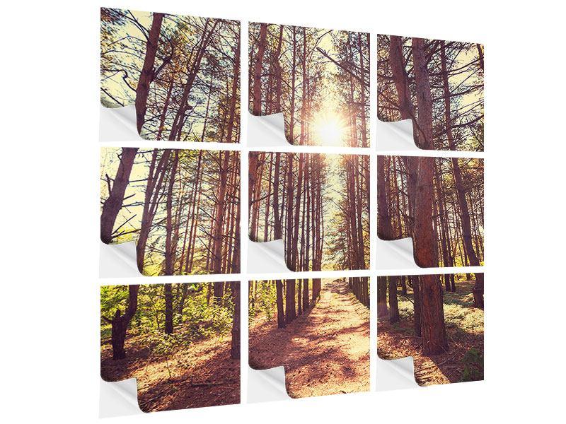 Klebeposter 9-teilig Licht am Ende des Waldweges