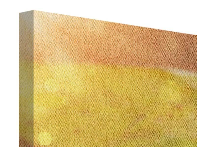 Leinwandbild Panorama Seerose