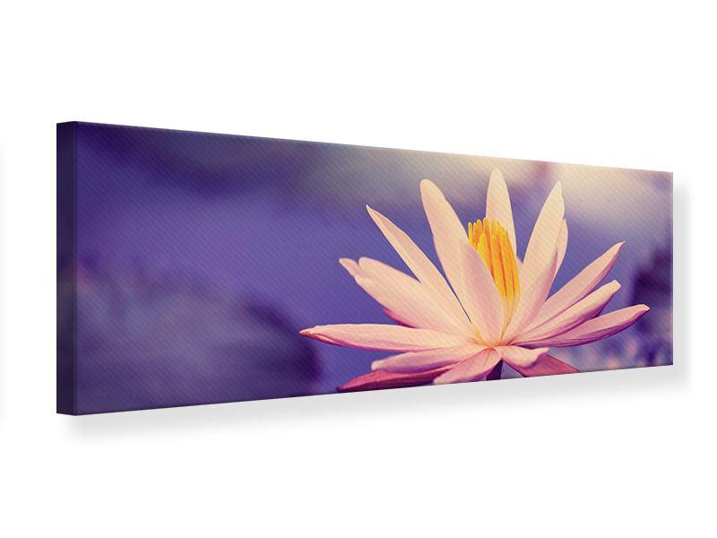 Leinwandbild Panorama Lotus bei Sonnenuntergang