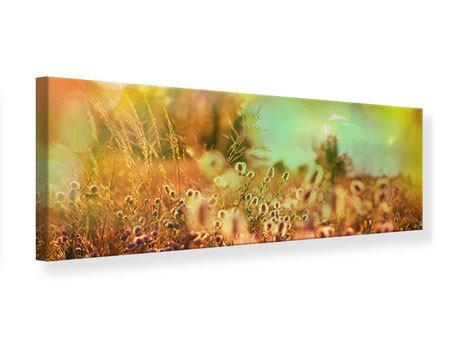 Leinwandbild Panorama Blumenwiese in der Abenddämmerung