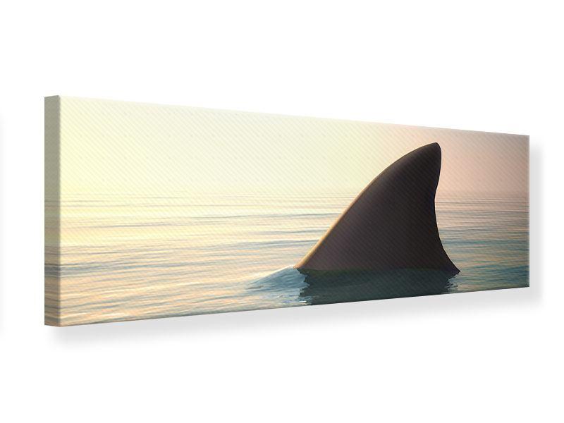 Leinwandbild Panorama Haifischflosse
