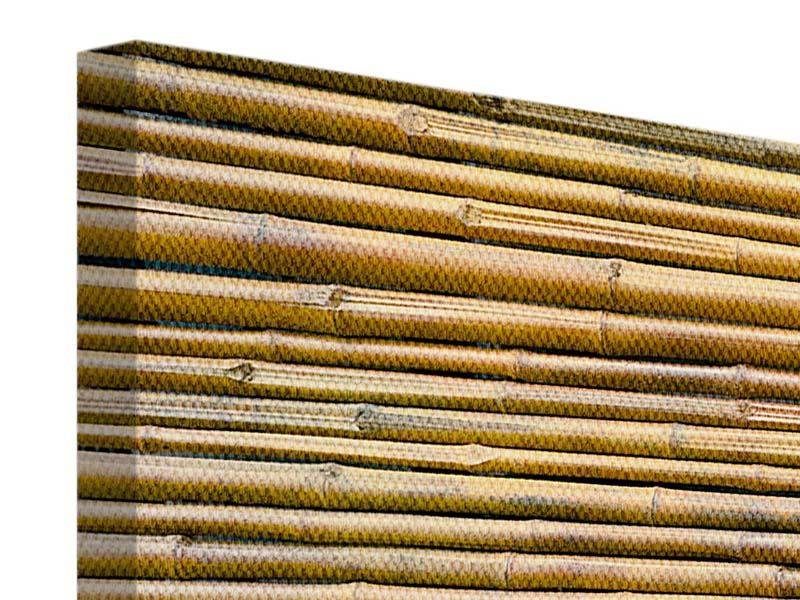 Leinwandbild Panorama Bambus