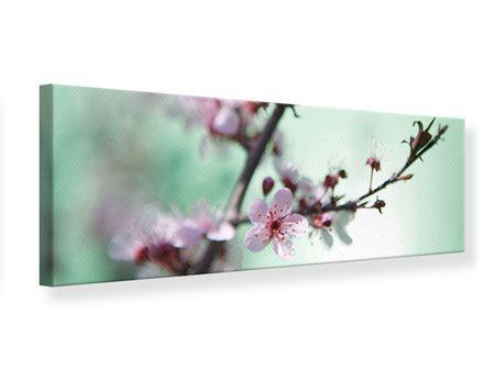 Leinwandbild Panorama Die japanische Kirschblüte