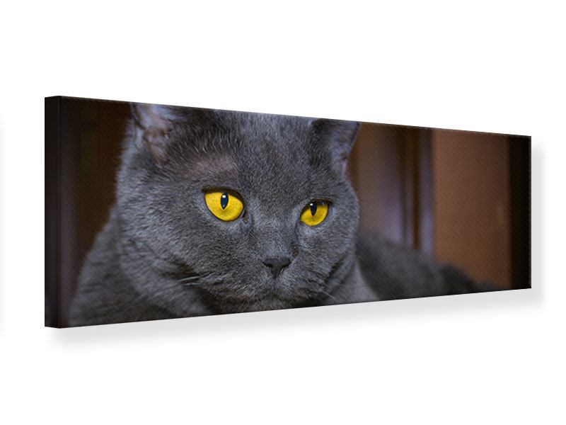 Leinwandbild Panorama Katzengöttin