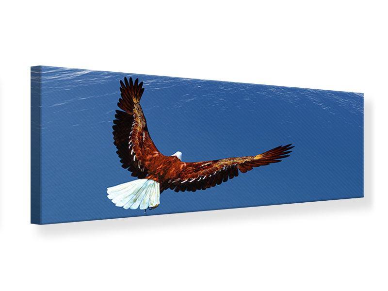 Leinwandbild Panorama Der Adler