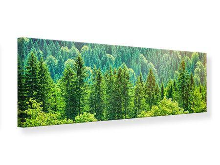 Leinwandbild Panorama Der Waldhügel