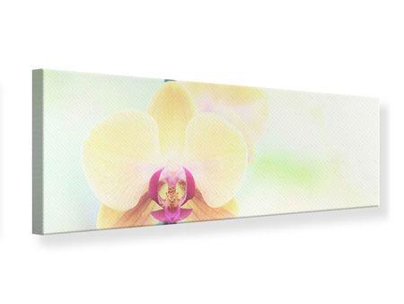 Leinwandbild Panorama Lovely Orchidee