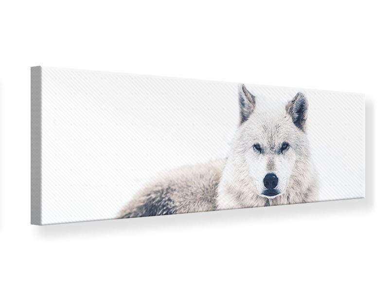 Leinwandbild Panorama Der Wolf