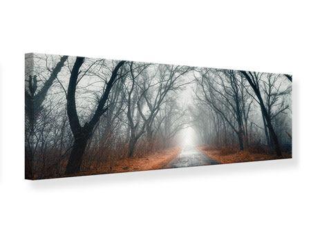 Leinwandbild Panorama Mysteriöse Stimmung im Wald