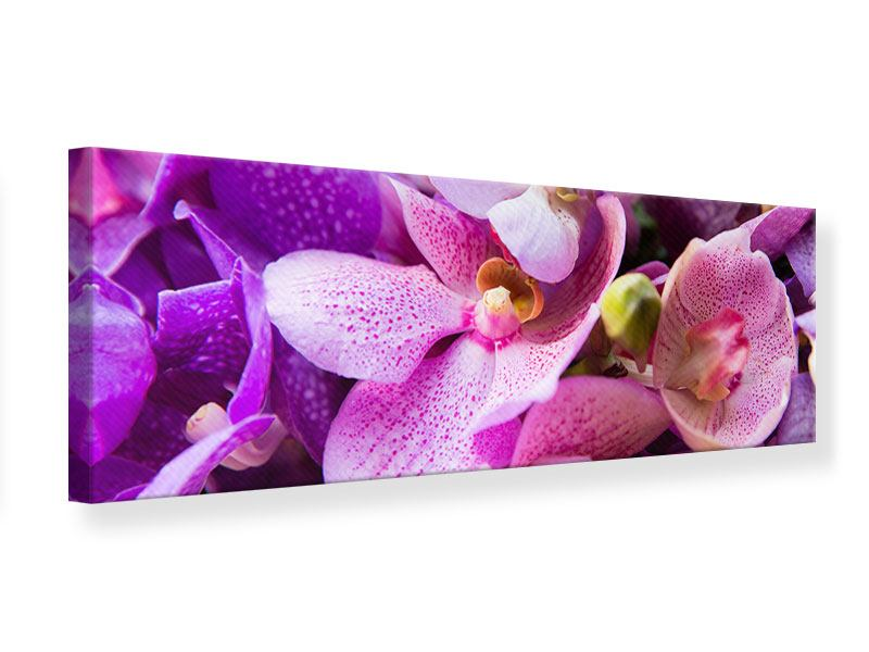 Leinwandbild Panorama Im Orchideenparadies