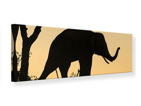 Leinwandbild Panorama Elefant an der Wand