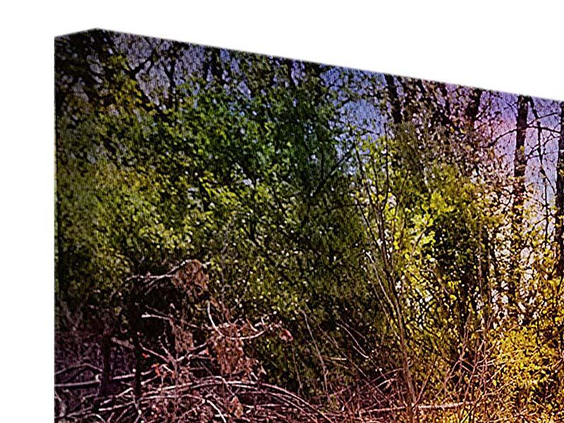 Leinwandbild Panorama Der Waldpfad