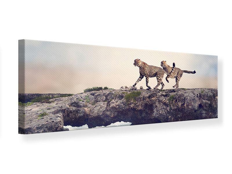 Leinwandbild Panorama Zwei Geparden