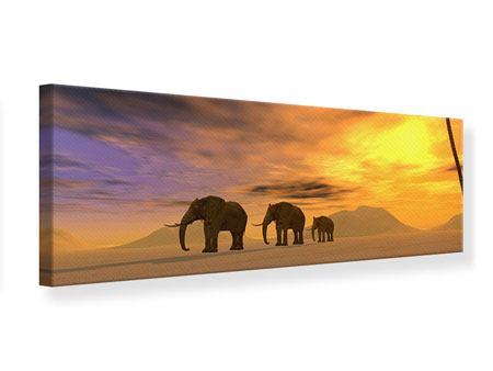 Leinwandbild Panorama Wüstenelefanten