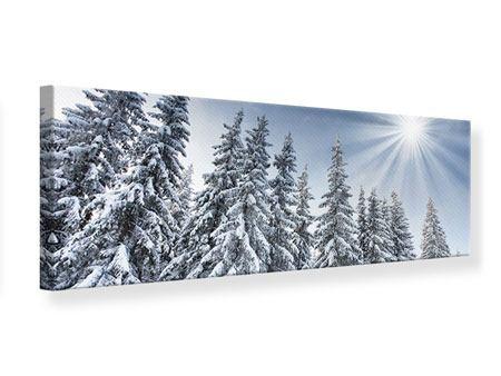 Leinwandbild Panorama Wintertannen