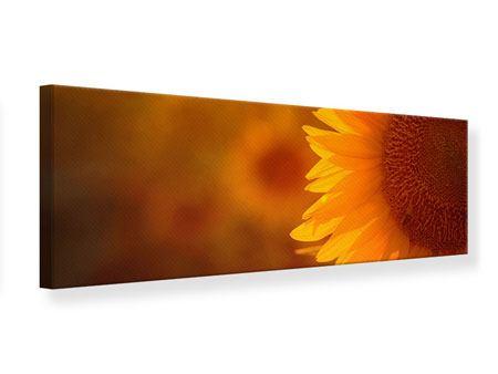 Leinwandbild Panorama Macro-Sonnenblume