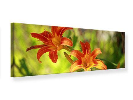 Leinwandbild Panorama Lilien in der Natur