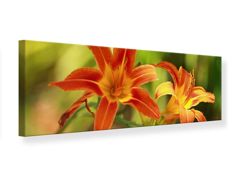 Leinwandbild Panorama Natural Lilien