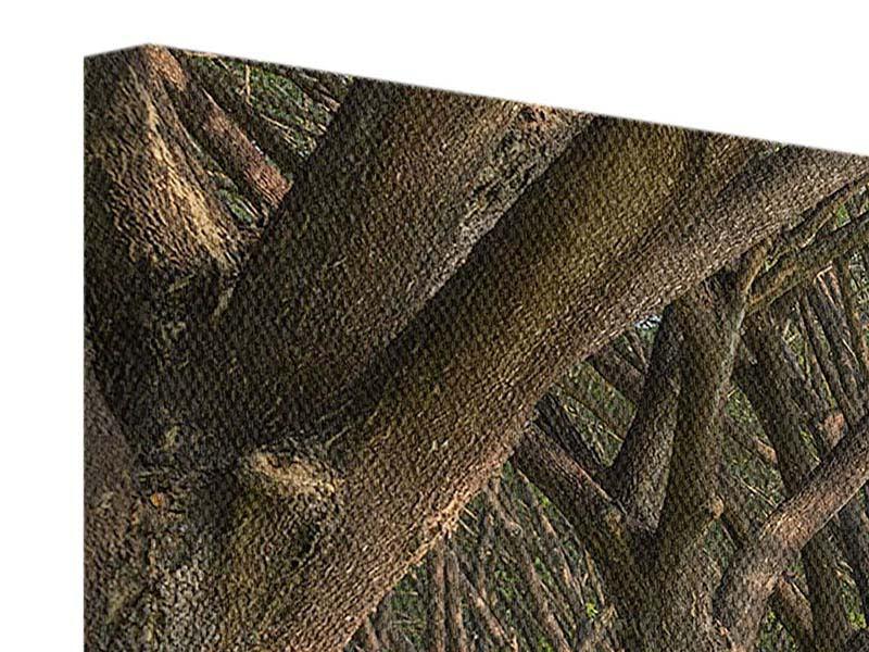 Leinwandbild Panorama Alter Baumbestand