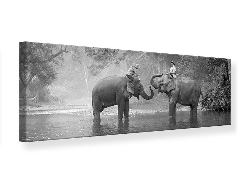 Leinwandbild Panorama Zwei Elefanten