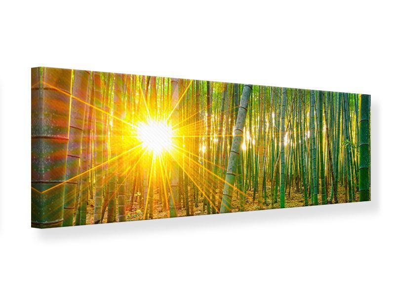 Leinwandbild Panorama Bambusse