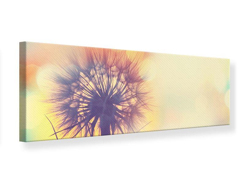 Leinwandbild Panorama Die Pusteblume im Licht