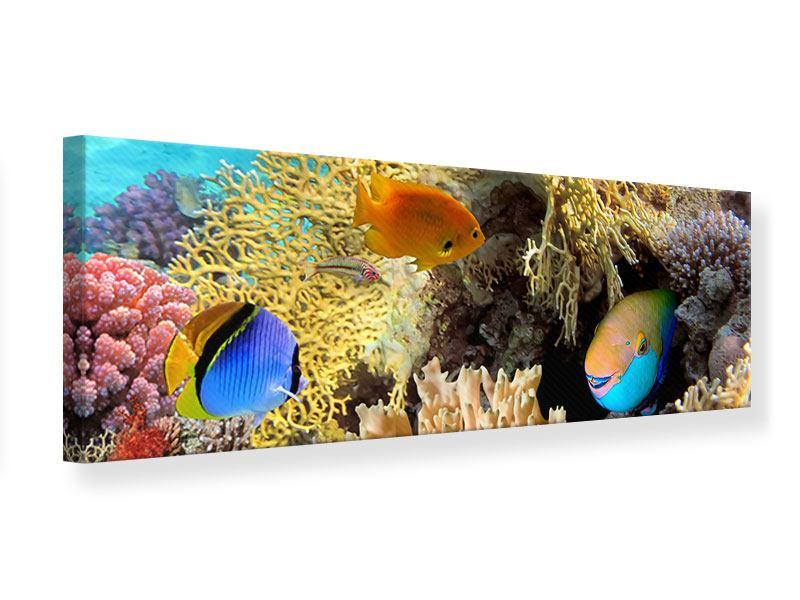 Leinwandbild Panorama Fischreichtum
