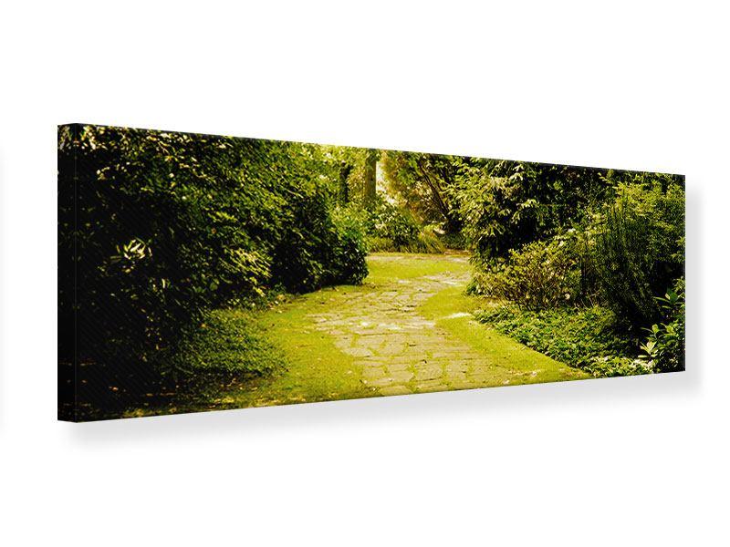 Leinwandbild Panorama Der bemooste Weg