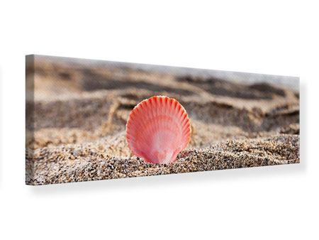 Leinwandbild Panorama Die Muschel