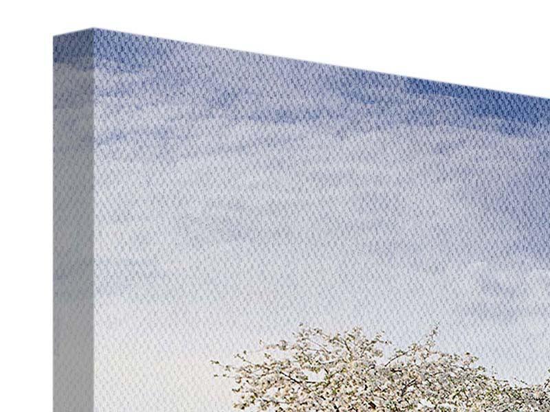 Leinwandbild Panorama Apfelbaum-Garten