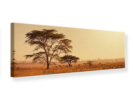 Leinwandbild Panorama Weideland in Kenia