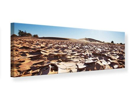 Leinwandbild Panorama Dürre